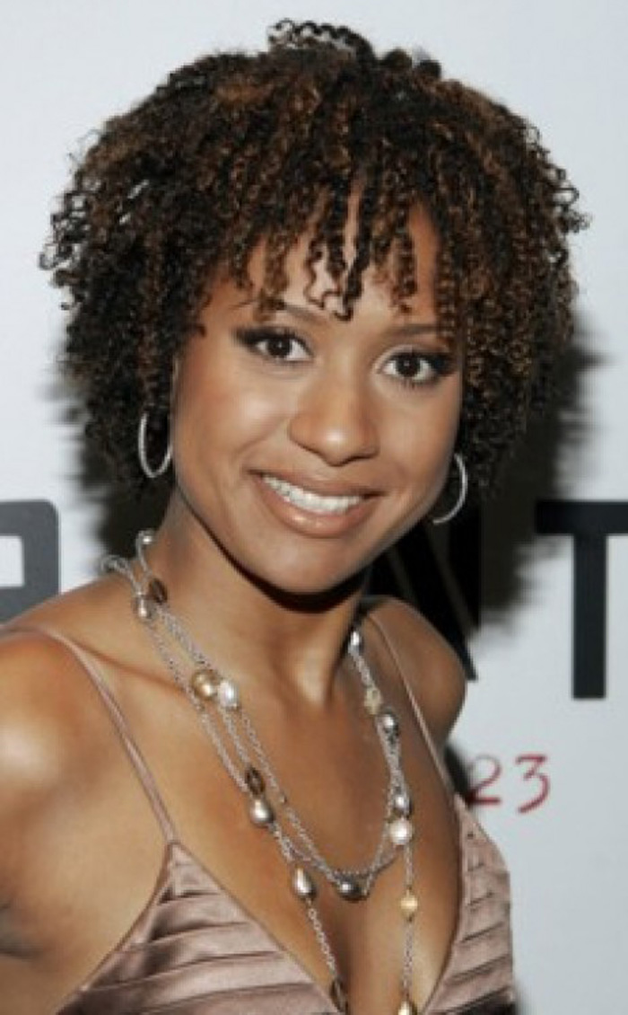 hairstyles for black women with natural hair - HairStyles