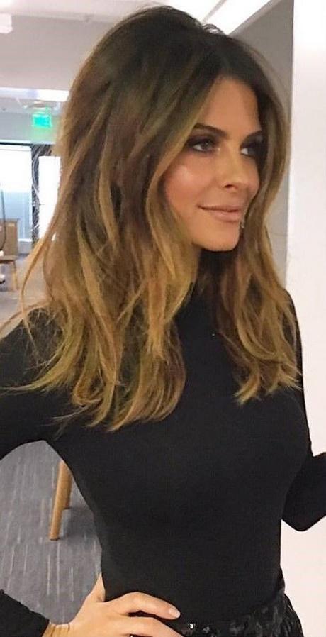 Mid Length Brown Hair